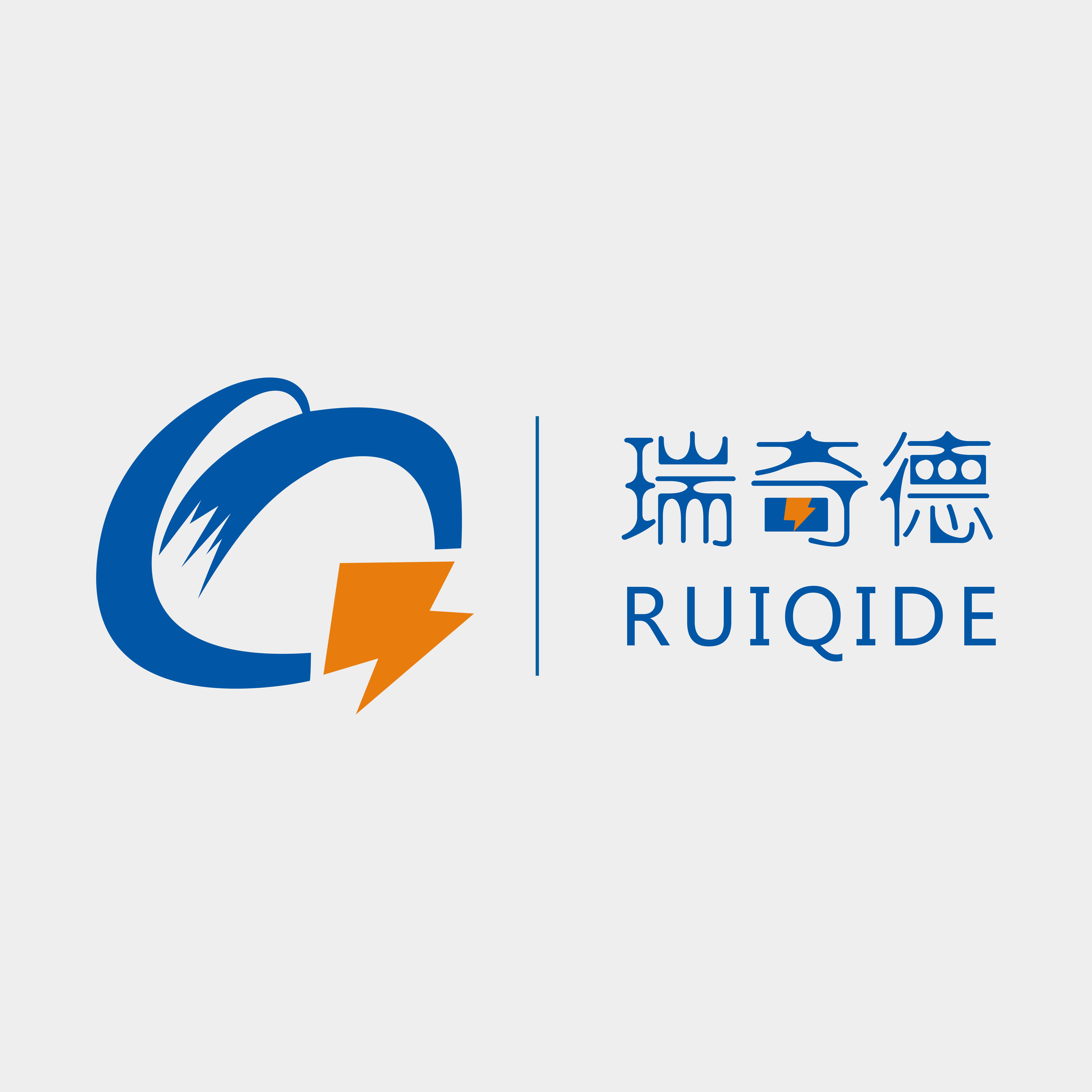 深圳瑞奇德科技开发有限公司