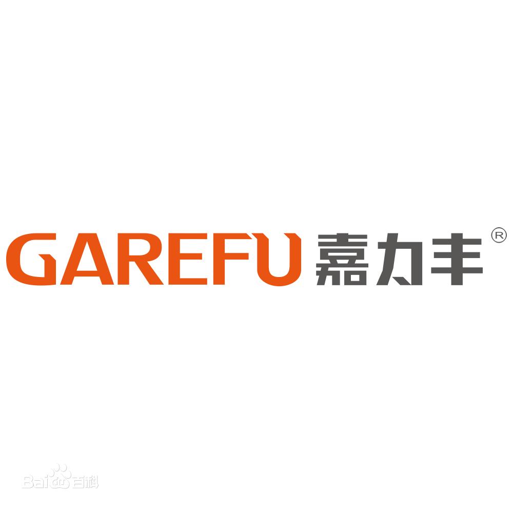 嘉力丰科技股份有限公司